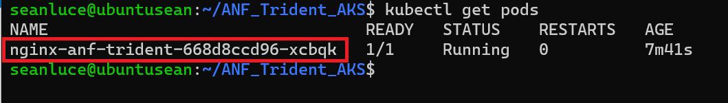 Get Pod Name